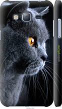 """Чохол на Samsung Galaxy J3 Duos (2016) J320H Красивий кіт """"3038c-265-2448"""""""