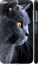 """Чохол на Samsung Galaxy J7 J700H Красивий кіт """"3038c-101-2448"""""""