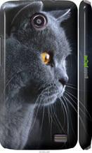 """Чехол на Lenovo A820 Красивый кот """"3038c-68-2448"""""""