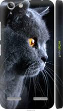 """Чохол на Lenovo K5 Plus Красивий кіт """"3038c-278-2448"""""""