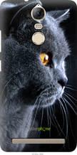 """Чехол на Lenovo Vibe K5 Note Pro Красивый кот """"3038u-394-2448"""""""