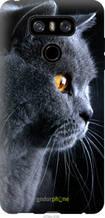 """Чехол на LG G6 Красивый кот """"3038u-836-2448"""""""