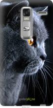 """Чохол на LG Class H650E Красивий кіт """"3038u-241-2448"""""""
