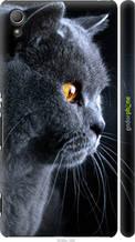 """Чохол на Sony Xperia Z3+ Dual E6533 Красивий кіт """"3038c-165-2448"""""""