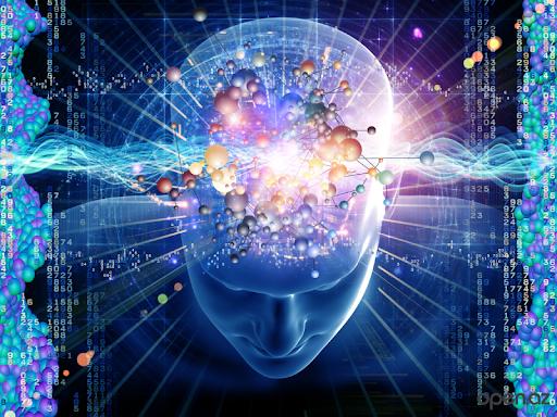 Neuronol Brain