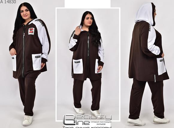 Женский спортивный костюм большой размер Размеры: 62-64, 66-68, 70-72, фото 2