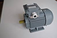 Электродвигатель асинхронный Lammers 13AA-132M-4-В3-11квт, лапы, 1500 об/мин.