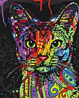 Картина по номерам Абиссинская кошка 40*50 см, зарисовка полная, на подрамнике
