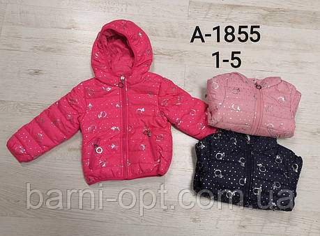 Куртки для дівчаток оптом, Sincere, 1-5 рр, фото 2