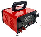 Пуско-зарядное устройство AL-FA DHP-80 для зарядки аккумуляторов 1.5 кВт, фото 5