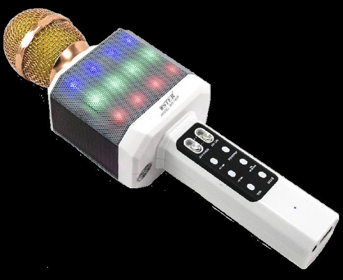 Мікрофон караоке WSTER WS-1828 - Бездротовий мікрофон караоке з динаміком і світломузикою Білий Топ