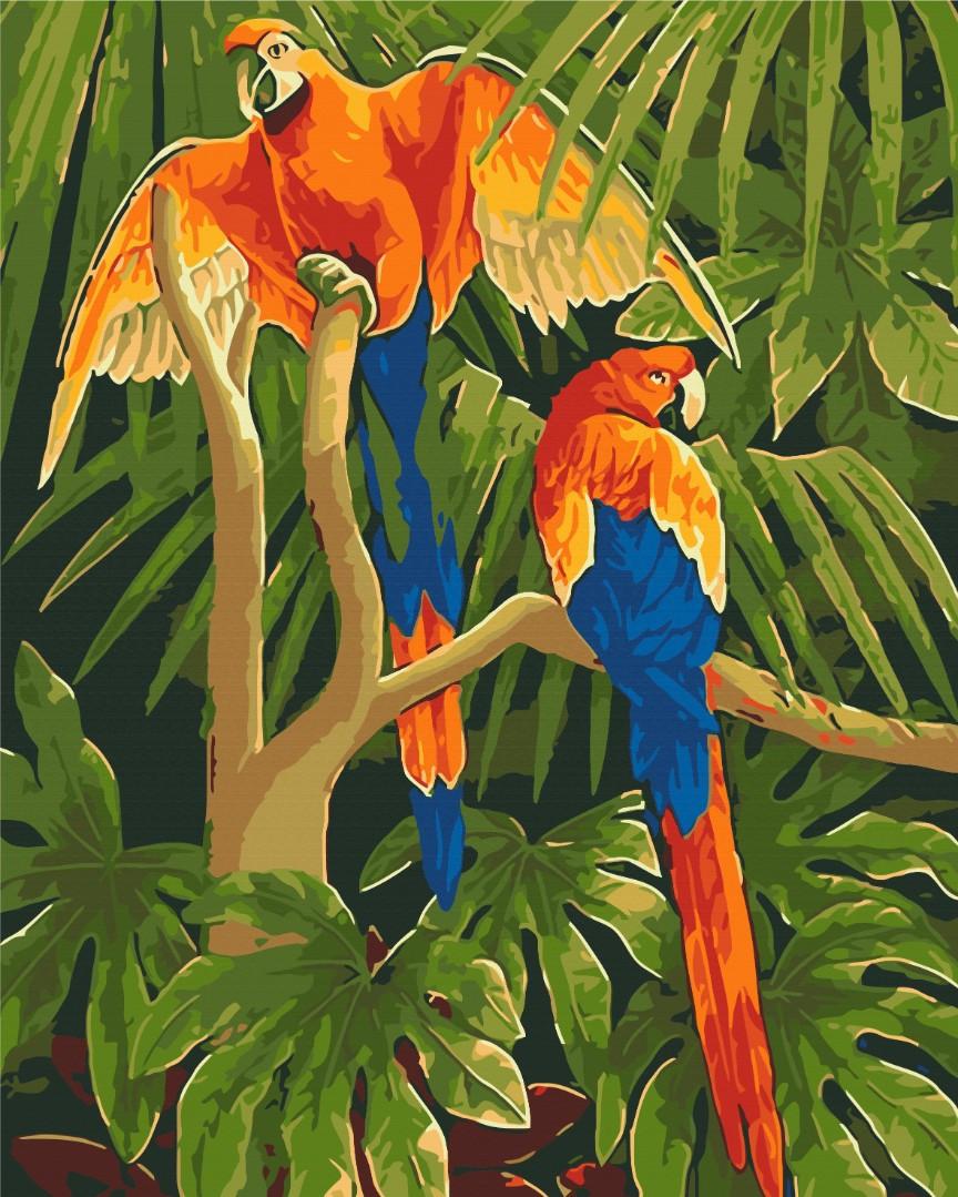 Тропічні птахи
