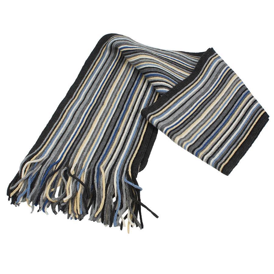 Мужской шарф в різнокольорову смужку 0118 strip4