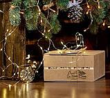 Подарунковий набір варення: з соснових шишок, калини, волоських горіхів, фото 5