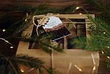 Подарунковий набір варення: з соснових шишок, калини, волоських горіхів, фото 7