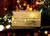 Подарунковий набір варення: з соснових шишок, калини, волоських горіхів, фото 4