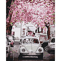 "Розпис по номерах - ""Volkswagen Beetle"" (КНО3521)"