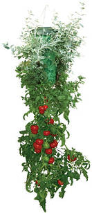 Плантатор для помідор Топсі (Topsy Turvy)