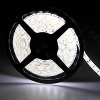5м лента светодиодная IP65 300x 5050 SMD LED белая