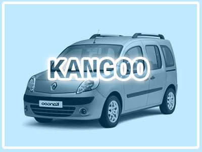 Kangoo 2008-