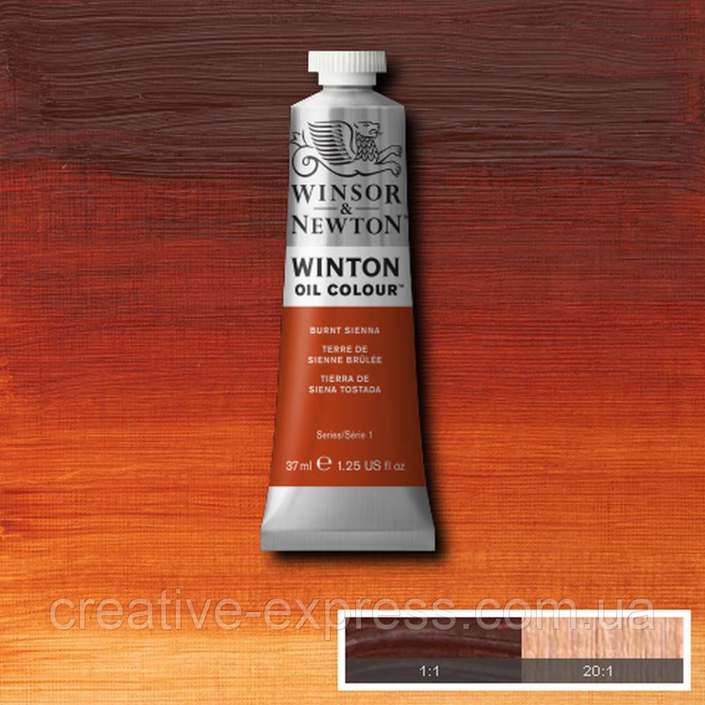 Фарба олійна 2 burn sienna, 200 ml WINSOR & NEWTON