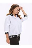 / Розмір 52,54,56 / блуза Жіноча з відкладним коміром Парпл / колір білий, фото 2