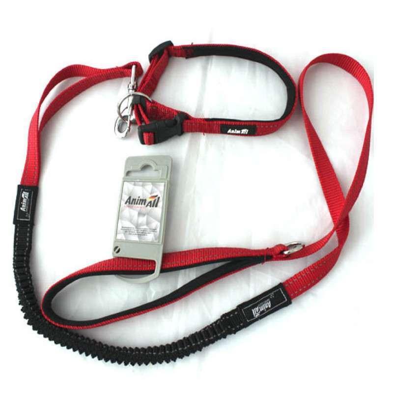 Ошейник с поводком AnimAll для собак, красный, HL-LH 148 RED 20х1200мм