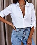 Женская стильная  рубашка из натурального котона белая голубая 42-44, 46-48, фото 4