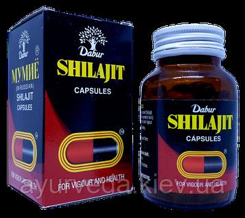 Шиладжит, очищенное мумие 100 cap улучшает усвоение и питание тканей и костей минеральными веществами