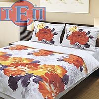 Двухспальное постельное белье ТЕП Акварель
