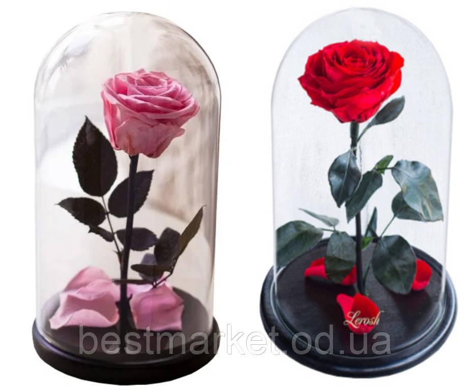 Подарункова Троянда в Колбі з LED Підсвічуванням Велика Червона і Рожева