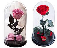 Подарункова Троянда в Колбі з LED Підсвічуванням Велика Червона і Рожева, фото 1