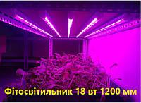 Фитосветильник светодиодный для растений, рассады и цветов/ Фитолампа