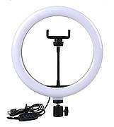 Кольцевая светодиодная лампа NZY 26 см С держателем для телефона (LED26)