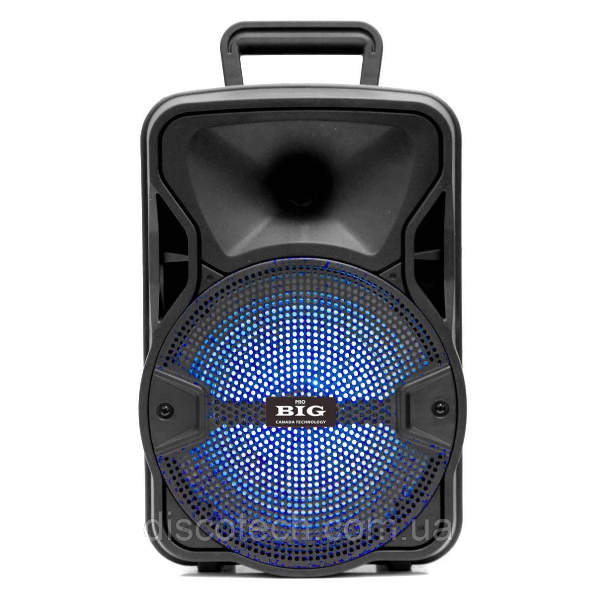 BIG80GALAXY USB/MP3/FM/BT/TWS + Шнуровий мікрофон