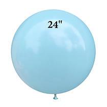 """24"""" (61 см) ArtShow"""