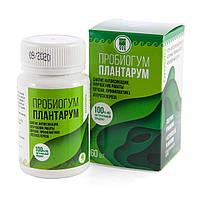 Пробиогум Плантарум 60 таблеток (для желудка, печени, иммунитет, дисбактериоз, колит, язва, интоксикация)