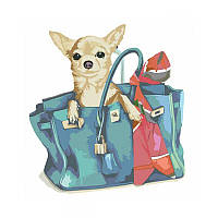 Картины по номерам Набор, техника акриловая живопись по номерам Собачка в женской сумке, 35х45 см, ROSA
