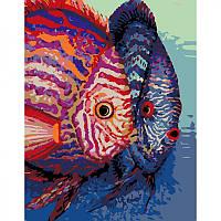 Набор, техника акриловая живопись по номерам Рыбы ROSA N00013100 (N00013100 x 227677), фото 1