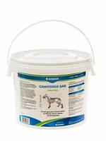Canina (Канина) Препарат стимулирующий рост и формирование костей Petvital Canhydrox GAG 1200таб 2кг