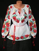 Сорочки вишиванки жіночі  1
