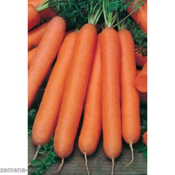Насіння Морква Нантська 20г, ТМ Врожай