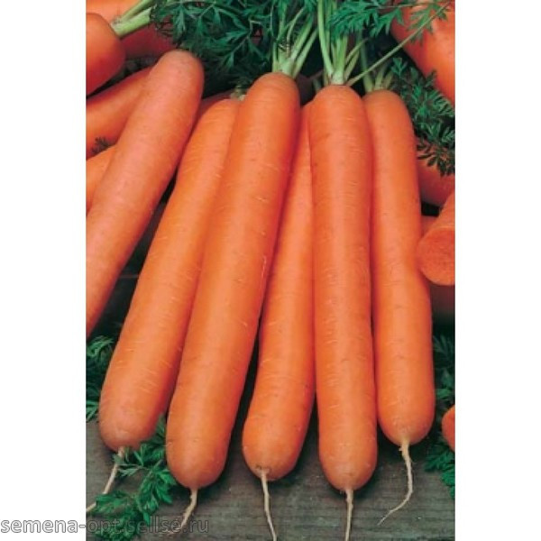 Семена Морковь Нантская 20г, ТМ Урожай