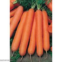 Насіння Морква Нантська 20г, ТМ Врожай, фото 1