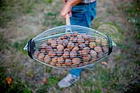 Рол для збору волоського горіха