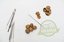Комплект для докола волоського горіха, фото 3