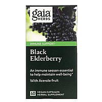 Черная бузина, Black Elderberry, Gaia Herbs, 60 капсул