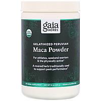 Мака (Maca Powder, Gelatinized), Gaia Herbs, порошок, желатинизированный, 454 г