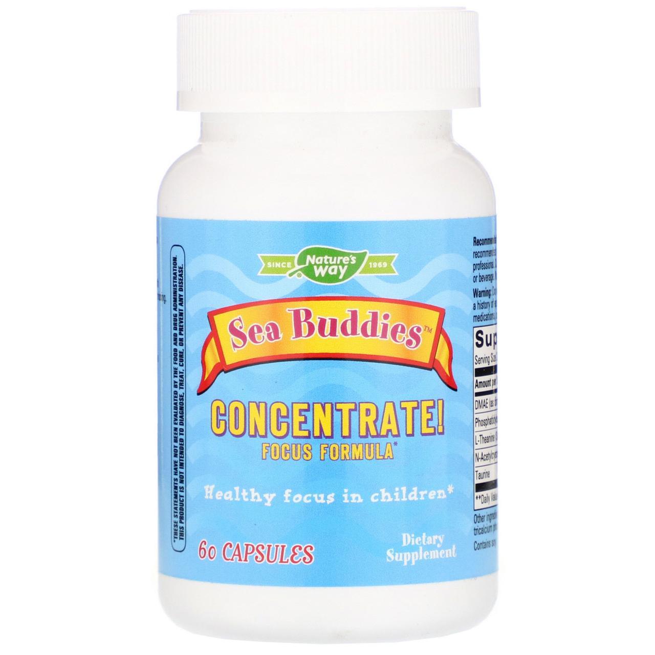 Формула для мозга, Concentrate, Focus Formula, Enzymatic Therapy, 60 капсул