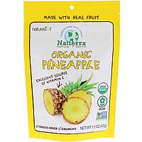 Сушеные ананасы, Organic Pineapple, Nature's All, 42,5 г